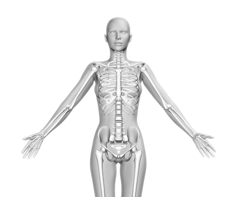 Eiwitten voor de opbouw van botten